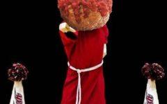Meatball Mistake
