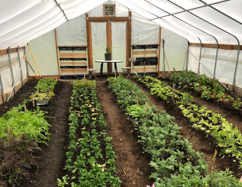 Sustainability the goal at Hoop House Garden