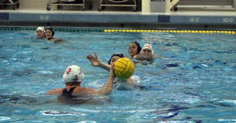 Water polo team to visit Michigan, California over Spring Break