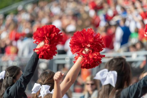Cheerleading team to give fans glimpse of Nationals routine